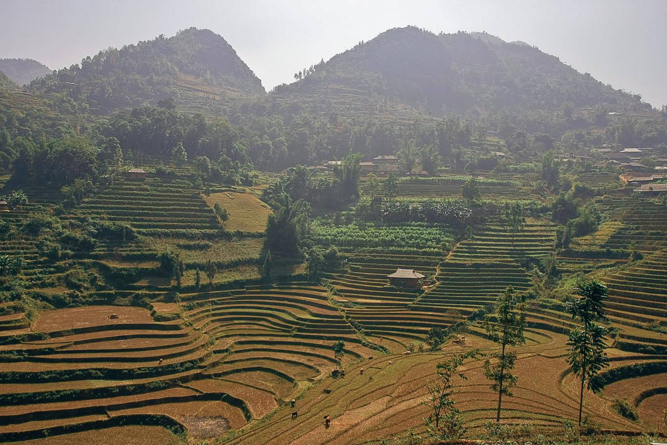 Wietnam, Wietnam